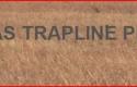 Kansastrapline_0